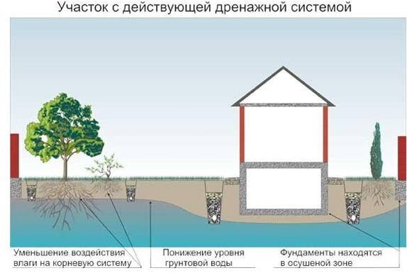 Дренажная система на участке для отвода воды