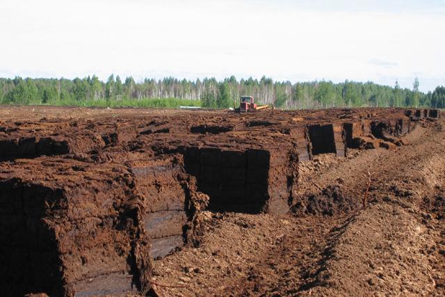 Подготовка под фундамент грунта торфяного